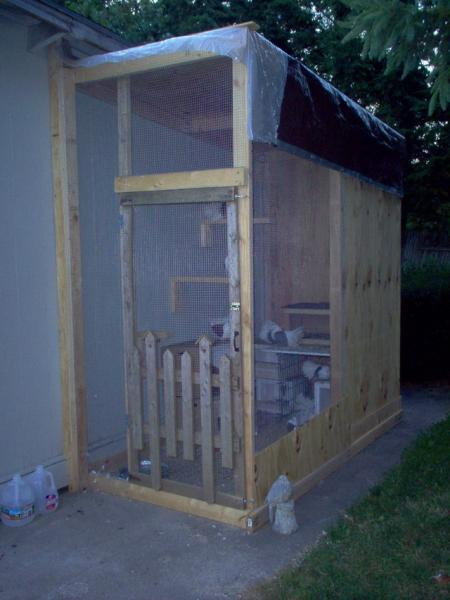 New Loft Aviary For My Rescue Pigeons Pigeon Talk